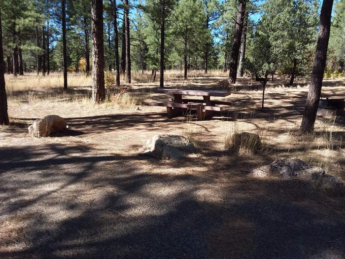 Moenkopi Loop Site 29 partially shaded with a picnic table, grill and fire pit