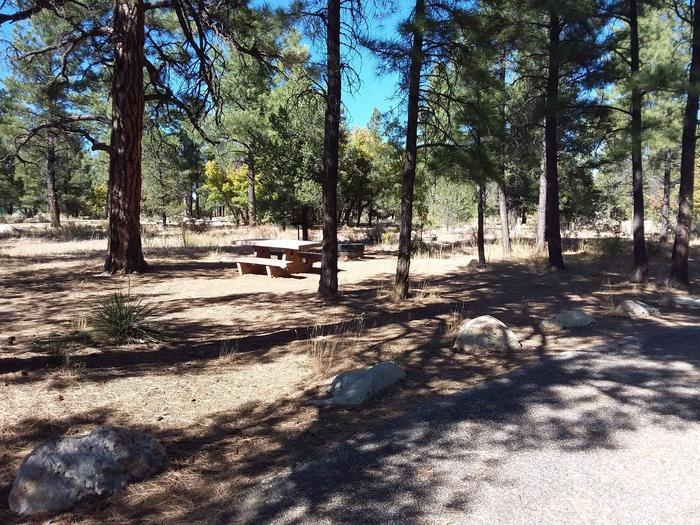 Moenkopi Loop Site 45 partially shaded with a picnic table, grill and fire pit