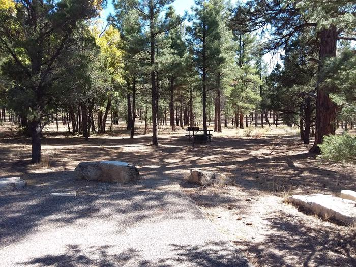 Moenkopi Loop Site 49 partially shaded with a picnic table, grill and fire pit
