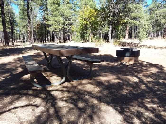 Moenkopi Loop Site 54 partially shaded with a picnic table, grill and fire pit
