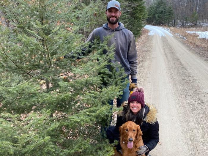 Preview photo of Chippewa National Forest Christmas Tree Permit
