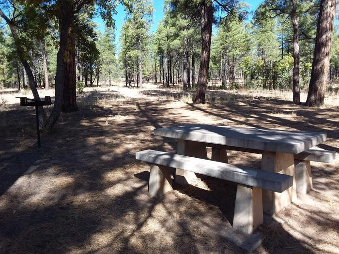 Moenkopi Loop Site 58 partially shaded with a picnic table, grill and fire pit