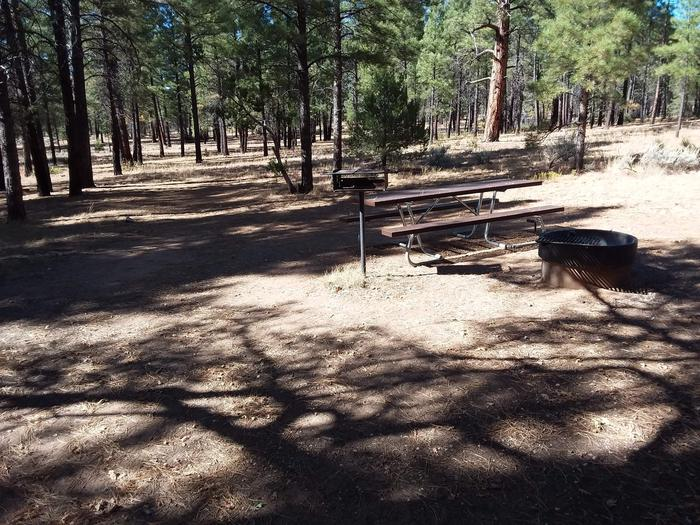 Moenkopi Loop Site 61 partially shaded with a picnic table, grill and fire pit