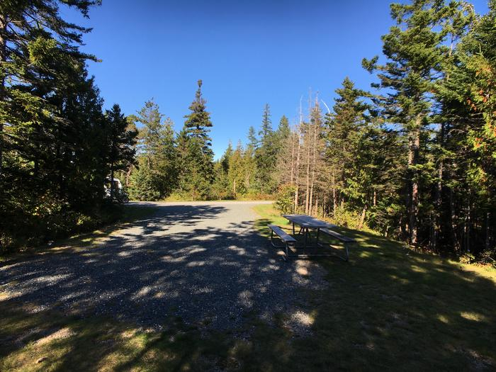 A photo of Site A04 of Loop A-Loop at Schoodic Woods Campground with Picnic Table, Electricity Hookup, Fire Pit