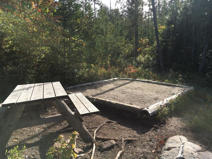 A photo of Site H09 of Loop Hike-In at Schoodic Woods Campground with Picnic Table, Shade, Tent Pad