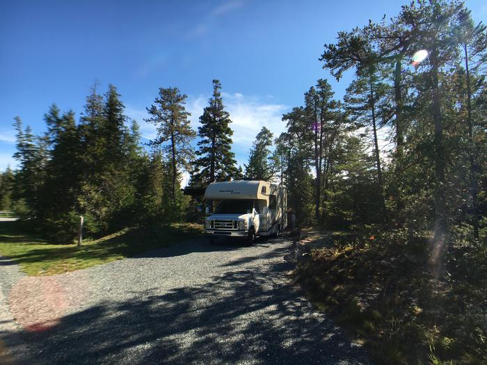 A photo of Site A08 of Loop A-Loop at Schoodic Woods Campground with Picnic Table, Electricity Hookup, Fire Pit