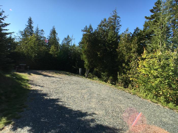 A photo of Site A21 of Loop A-Loop at Schoodic Woods Campground with Picnic Table, Electricity Hookup, Fire Pit