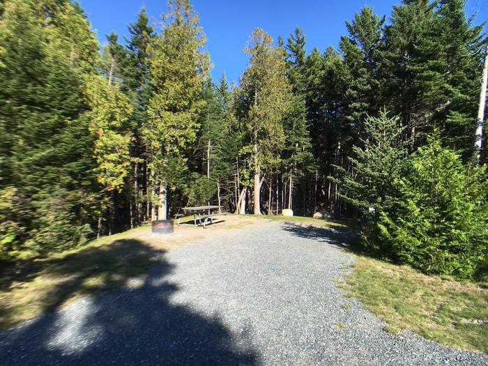 A photo of Site A23 of Loop A-Loop at Schoodic Woods Campground with Picnic Table, Electricity Hookup, Fire Pit