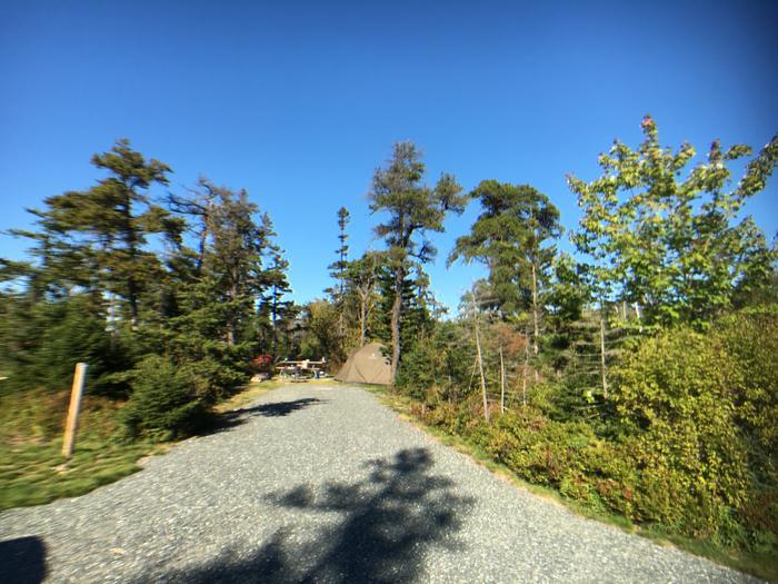 A photo of Site A26 of Loop A-Loop at Schoodic Woods Campground with Picnic Table, Electricity Hookup, Fire Pit