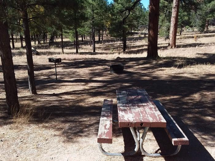 Moenkopi Loop Site 66 partially shaded with a picnic table, grill and fire pit