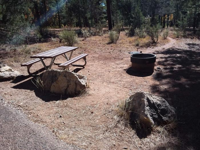 Moenkopi Loop Site 67 partially shaded with a picnic table, grill and fire pit