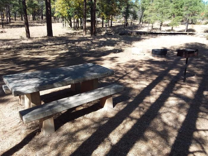 Moenkopi Loop Site 68 partially shaded with a picnic table, grill and fire pit