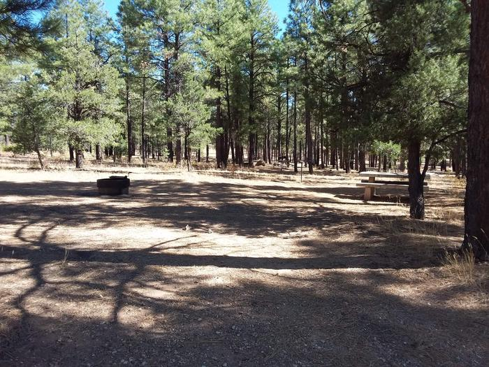 Toroweap Loop Site 14 partially shaded with picnic table, grill and fire pit
