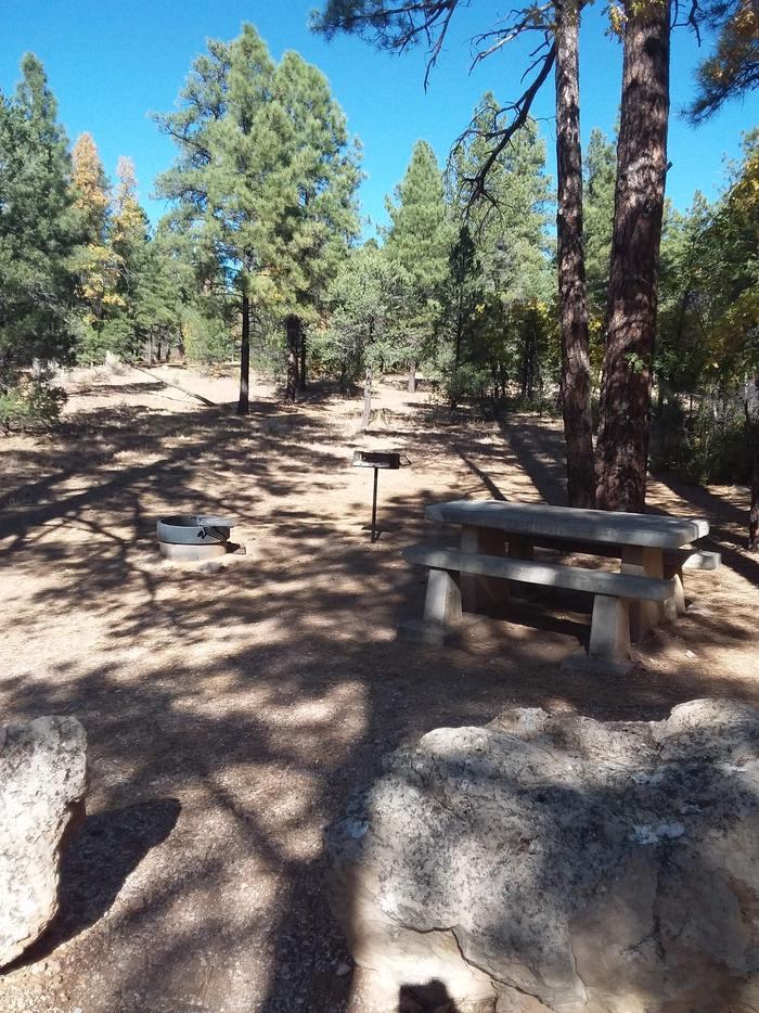 Toroweap Loop Site 18 partially shaded with picnic table, grill and fire pit