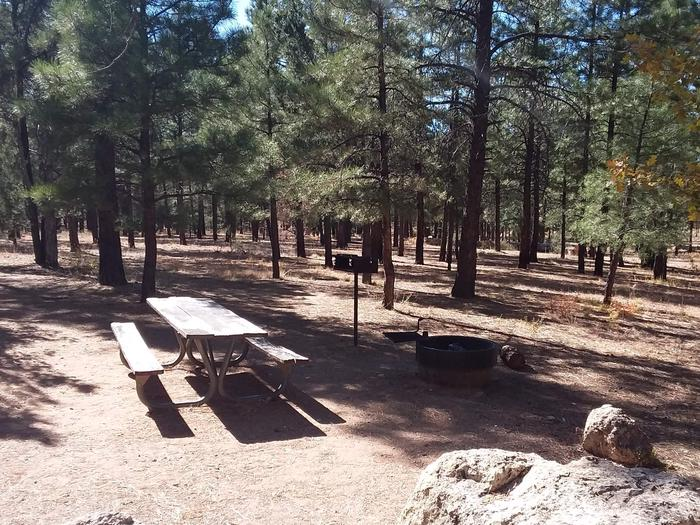 Toroweap Loop Site 19 partially shaded with picnic table, grill and fire pit