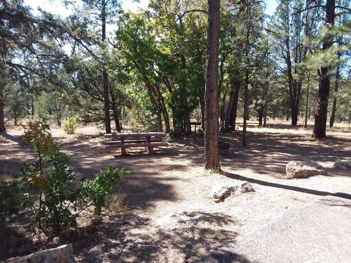 Hermit Loop Site 33 partially shaded with picnic table, grill and fire pit