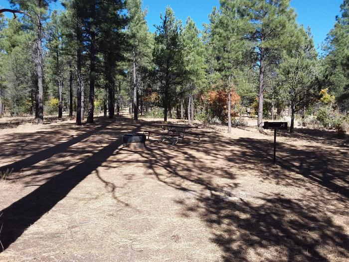 Hermit Loop Site 34 partially shaded with picnic table, grill and fire pit