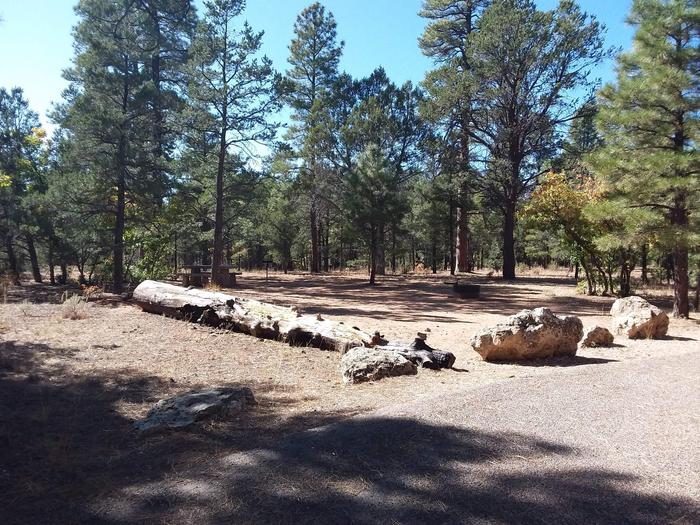 Hermit Loop Site 35 partially shaded with picnic table, grill, fire pit and fallen log for possible seating