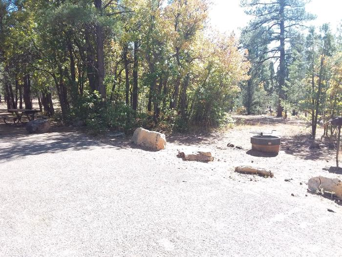 Hermit Loop Site 42 partially shaded with picnic table, grill and fire pit