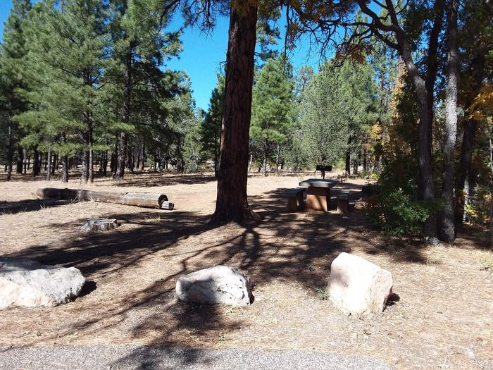 Hermit Loop Site 44 with picnic table, grill, fire pit and log for possible seating