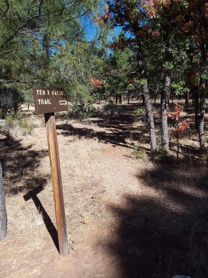 TEN-X Campground Nature Trail Sign