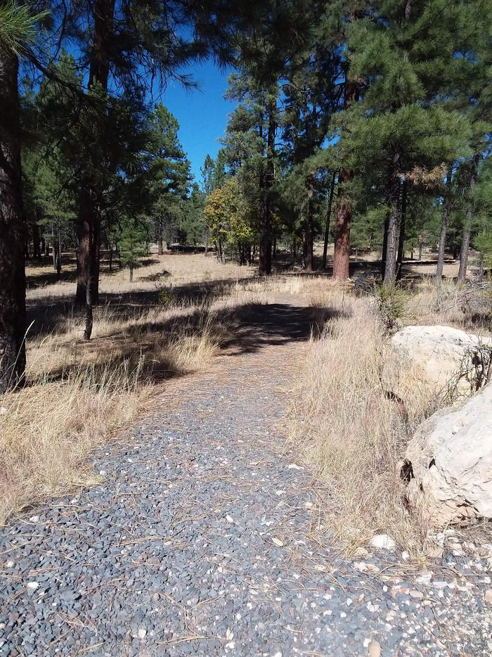 TEN-X Campground Nature Trail