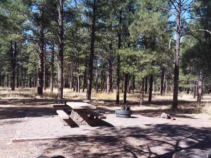 Loop A Campsite 06 partially shaded with picnic tables and a fire ring