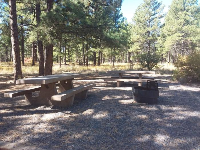 Loop A Campsite 07 partially shaded with picnic tables and a fire ring