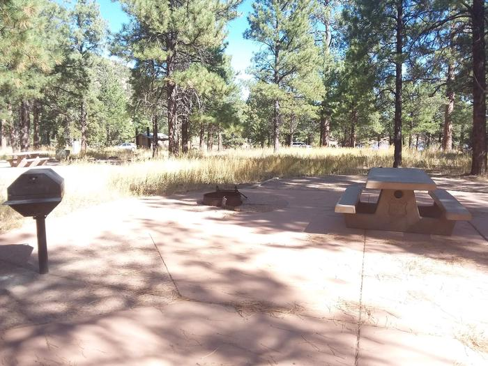 Loop A Campsite 11 partially shaded with a picnic table, grill, fire ring and nearby restroom