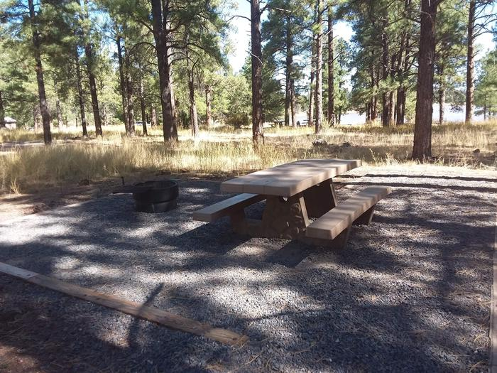 Loop A Campsite 12 partially shaded with a picnic table and fire ring