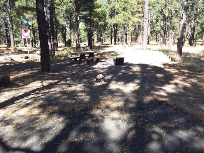 Loop A Campsite 28 partially shaded with a picnic table and fire ring