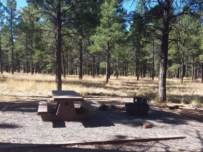 Loop B Campsite 08 with a picnic table and fire ring