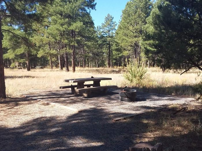 Loop B Campsite 09 partially shaded with a picnic table and fire ring