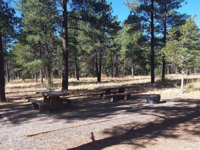 Loop B Campsite 13 partially shaded with picnic tables and a fire ring