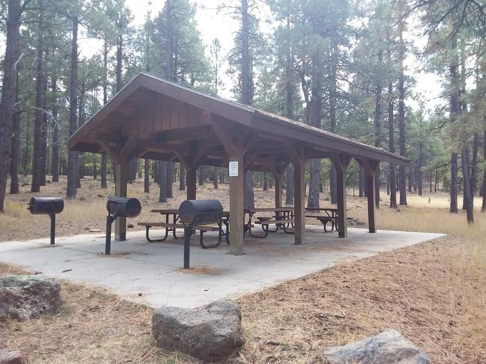 Day use picnic area with grills, tables, and a shade structure