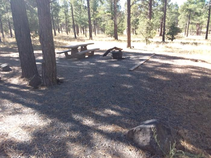 Loop B Campsite 16 partially shaded with a picnic table and fire ring