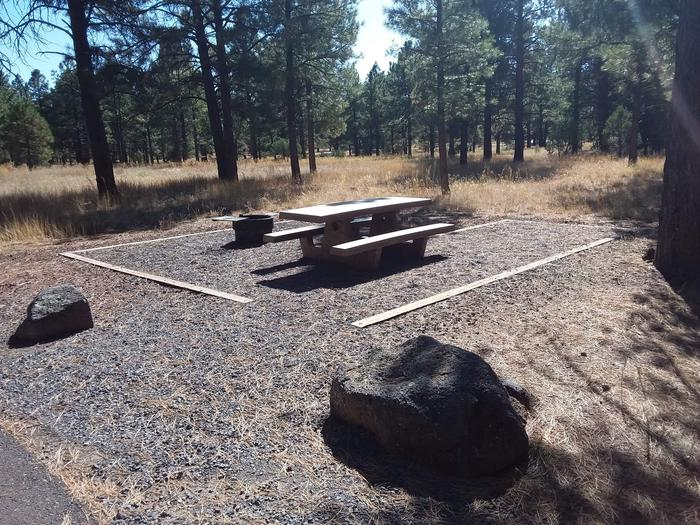 Loop B Campsite 23 partially shaded with a picnic table and fire ring
