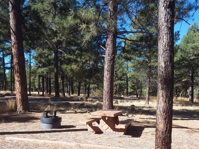 Loop C Campsite 36 partially shaded with a picnic table and fire ring