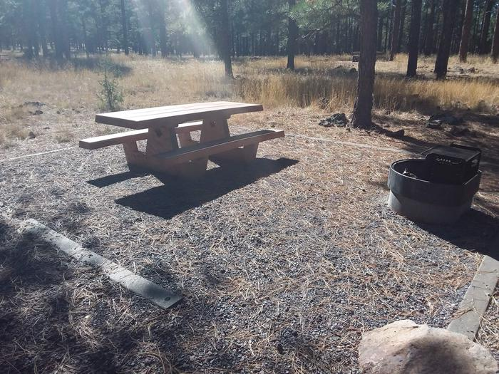 Loop D Campsite 50 with a picnic table and fire ring