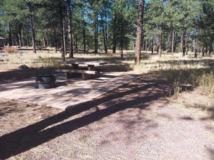 Loop D Campsite 52 partially shaded with a picnic table and fire ring