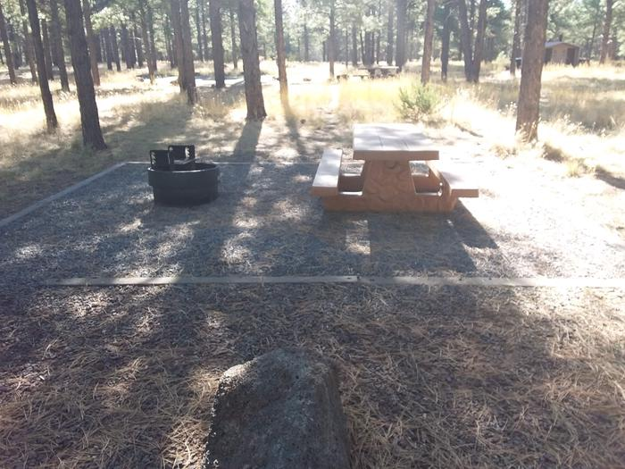 Loop D Campsite 54 partially shaded with a picnic table and fire ring