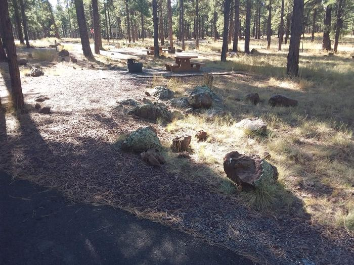 Loop E Campsite 61 partially shaded with a picnic table and fire ring
