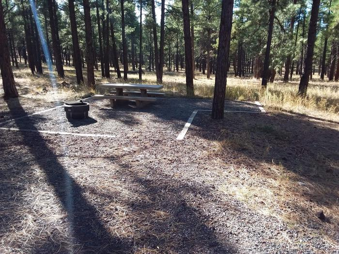 Loop E Campsite 64 partially shaded with a picnic table and fire ring