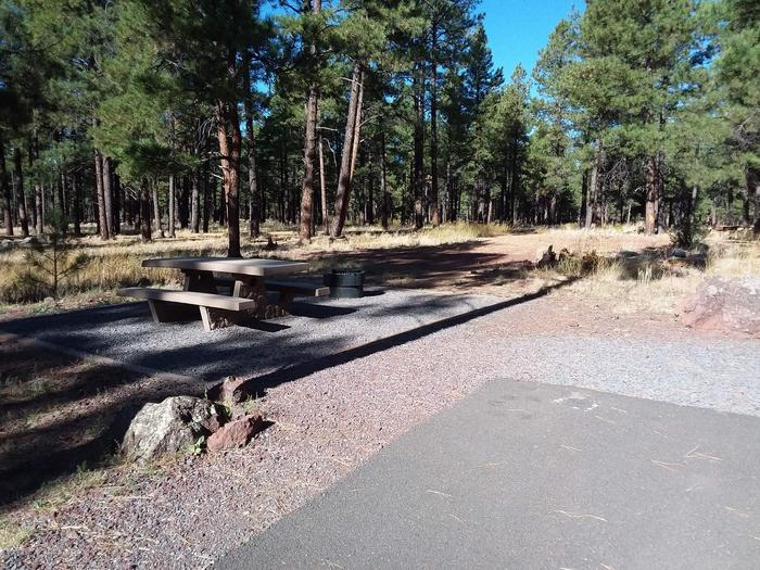 Loop E Campsite 65 with a picnic table and fire ring