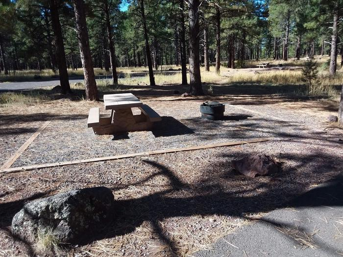 Loop E Campsite 69 which includes a picnic table and fire ring