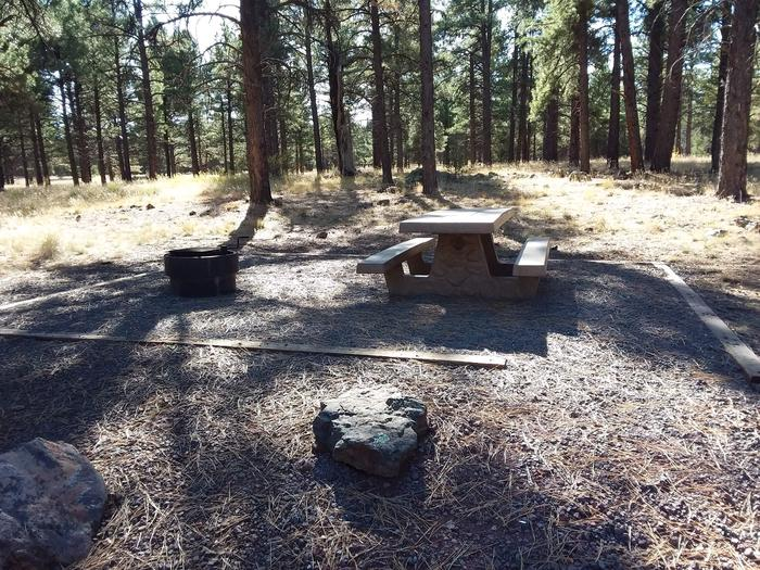 Loop E Campsite 71 partially shaded with a picnic table and fire ring