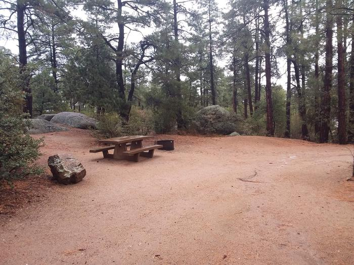 Site 8 with table and fire ring with background rocks and treesCampsite 8