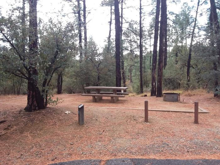 Hilltop Campground Loop B Site 16: table, fire pitHilltop Campground Loop B Site 16