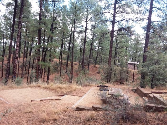Hilltop Campground Loop C Site 35: table, fire pit, tent padHilltop Campground Loop C Site 35
