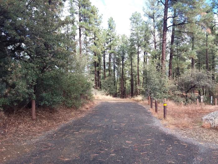 Hilltop Campground Loop C Site 35: road accessHilltop Campground Loop C Site 35